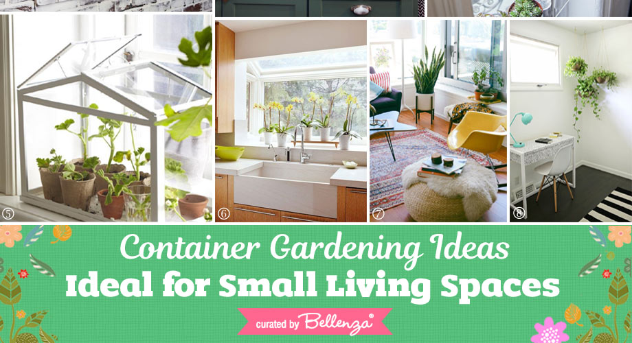 Small container gardening ideas for small living spaces.