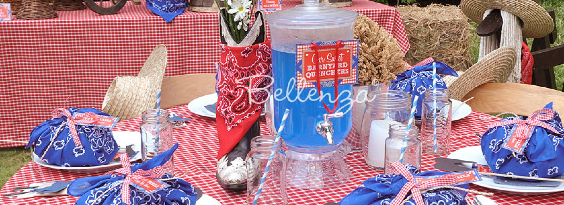 DIY Cowboy Party Table Centerpiece and Table Settings