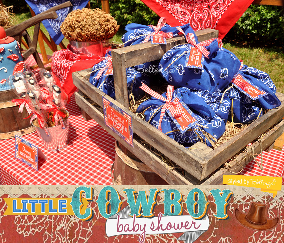 Cowboy Baby Shower Styled Shoot by Bellenza. Wheelbarrow display on a dessert table.