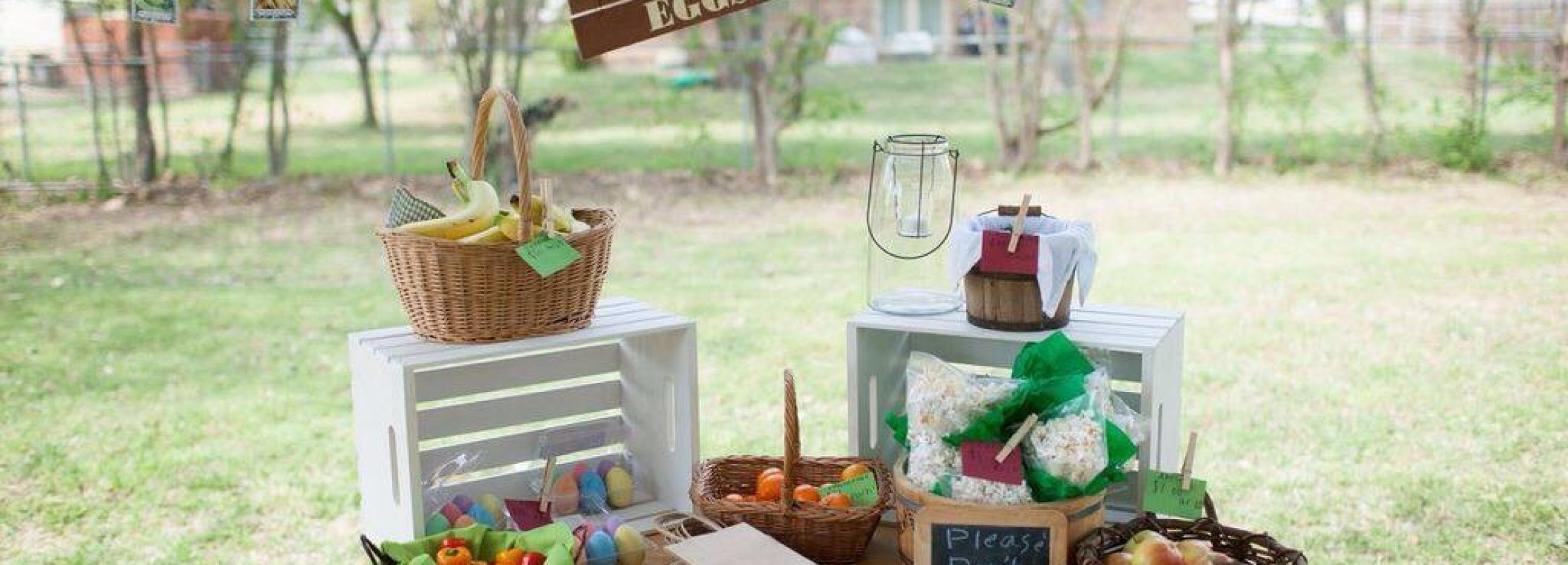 Farmer's Market Themed Birthday by Danielle Riojas