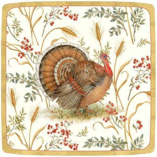 Turkey with gold borders on paper plate.