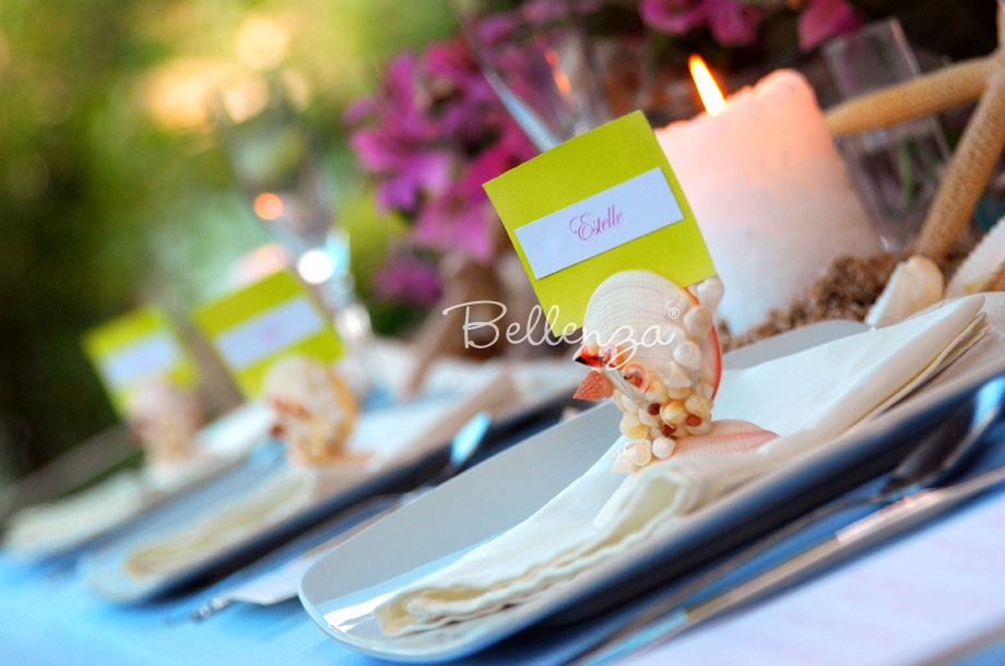real anaisa seashell place card holders set of 4