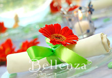 Orange daisy on napkin