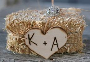 Barnyard hay holding rings