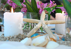 Seashell table spread