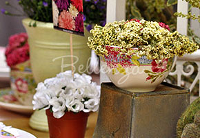 Spring flowers in teapot