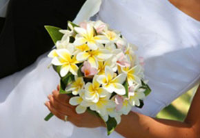 Bouquets for a tropical wedding features plumerias