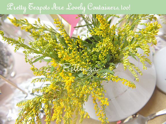 Yellow Goldenrod in tea cups