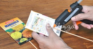 Seed Packet Table Name Holders Tutorial