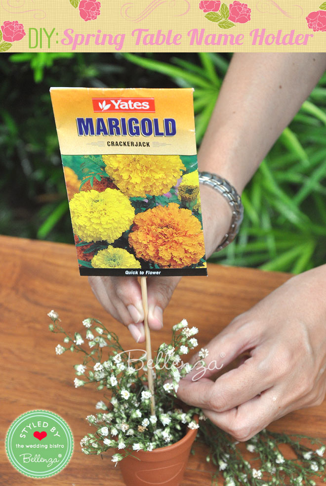 centering the marigold seed packet