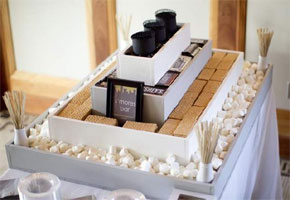 Own S'mores Bar at a Wedding!