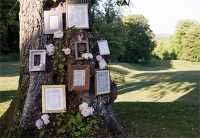Hanging Frames on Trees at Weddings: Creative Decorating Ideas!