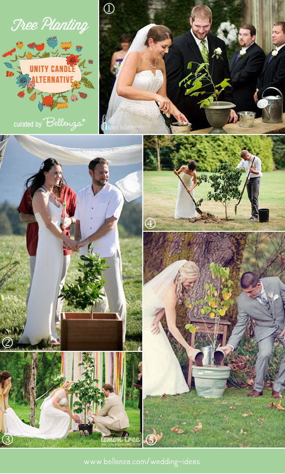 Tree Planting Ceremony: What to Consider for Your Special Day ...