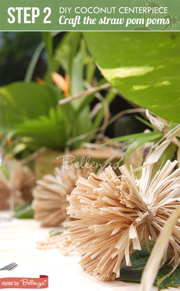 Step 2-Make Vases from Coconuts | Tropical Wedding Centerpiece Using Coconuts | www.bellenza.com
