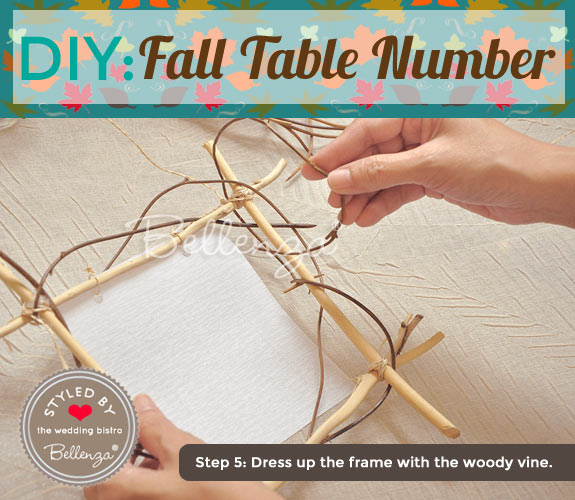 Decorate the frame with the woody vine.