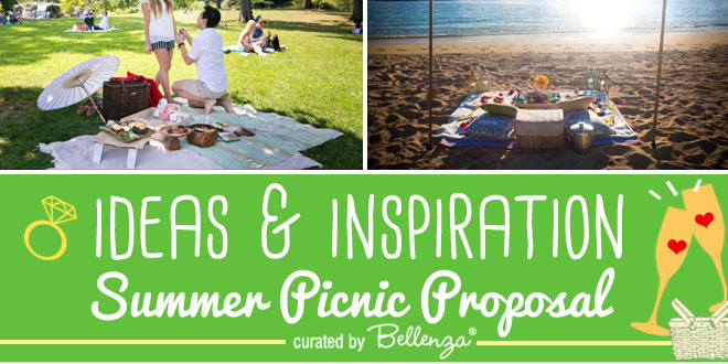 Summer picnic proposal