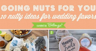 wedding favor nuts to give guests