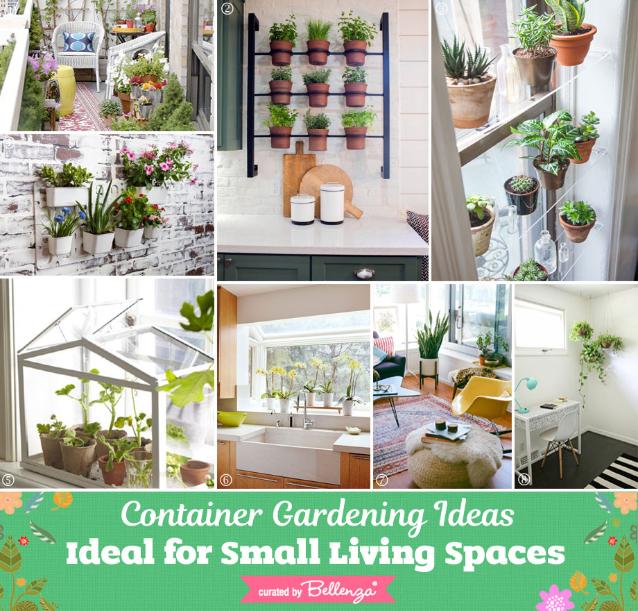 Container Gardening for a Small Living Spaces