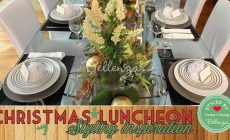 Budget Christmas Decorations