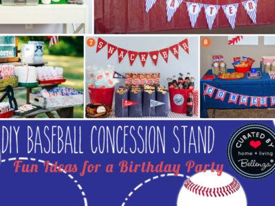 DIY Baseball Concession Stand