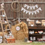 Cowboy party. Photo courtesy of Giggles Galore - Elaine Dunn Photography