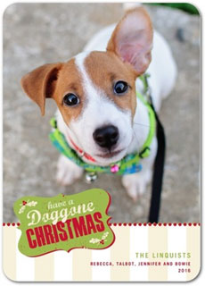 Doggie Christmas Party Invitation via Tiny Prints