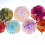 12″ Zaarni Organza Circles (set of 5)