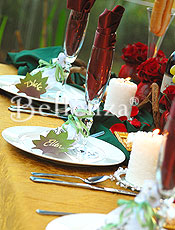 Season-inspired place setting