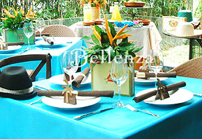 Havana Night's Engagement Party Theme