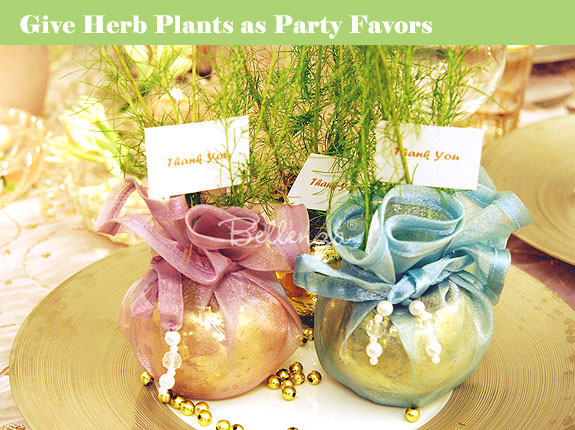 Herb-infused favors oregano and dill