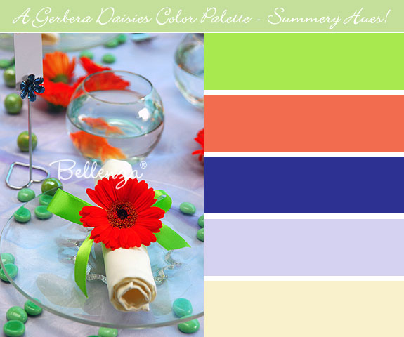 Summer gerbera theme