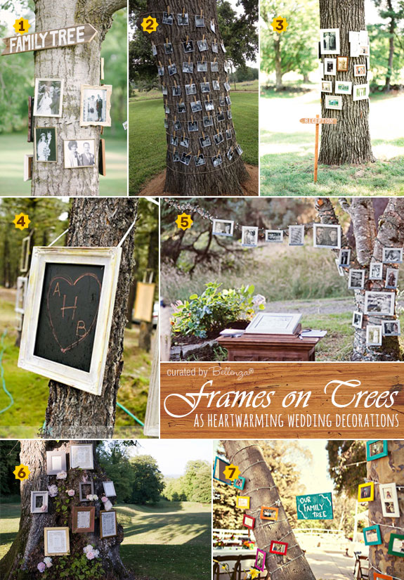 Creative ways of decorating trees with picture frames as memory trees, family trees, or dessert table backdrops