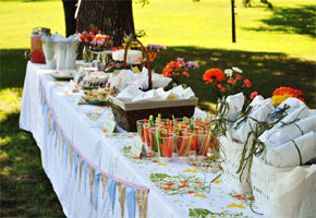 Bridal shower picnic table by Suburbs Mama