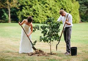 Planting ceremony