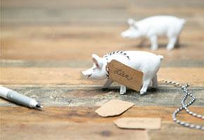 Pig cardholders via Wayfair.com