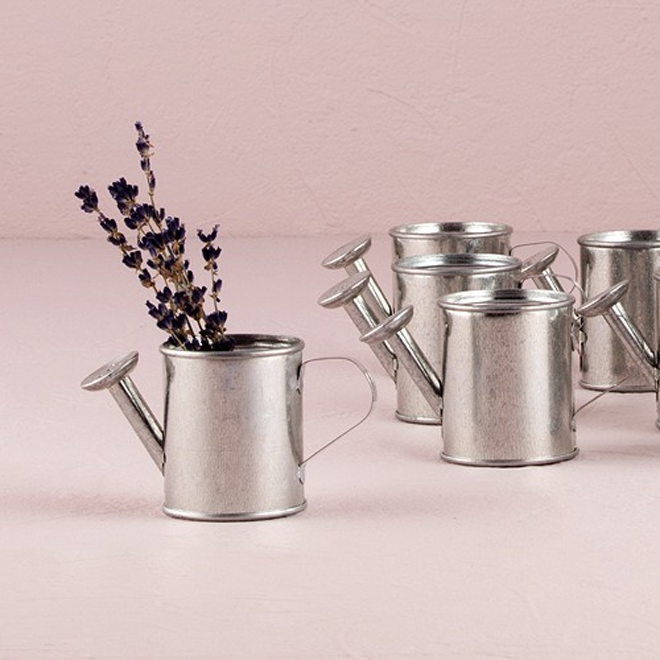 Galvanized steel watering can favors