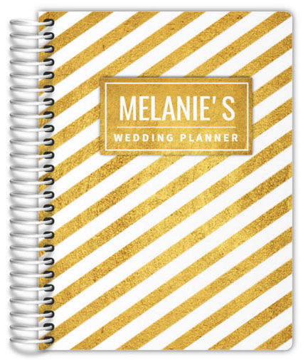 Faux gold stripes planner by Purple Trail